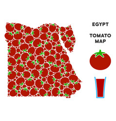 Egypt map composition of tomato vector