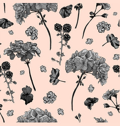 Floral seamless pattern with blooming geraniums vector