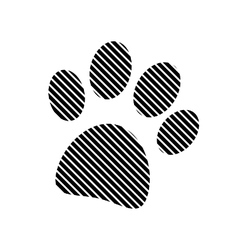 Paw sign on white vector image