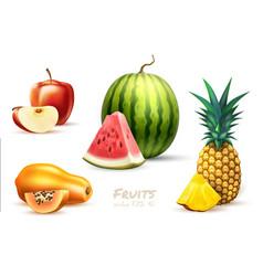 pineapple papaya watermelon apple exotic fruit set vector image