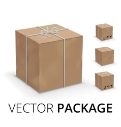 Wraped box vector image