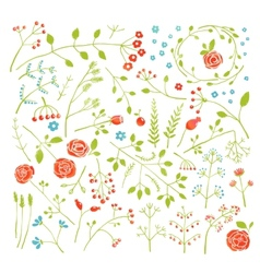 Floral Doodle Field Flowers and Plants Decoration vector image vector image