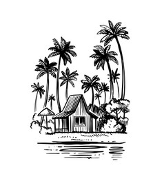bungalow with palm trees next to sea beach tropic vector image