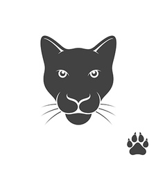Panther with paw print vector