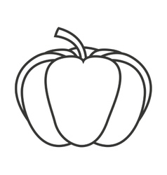 Pumpking vegetable isolated icon vector
