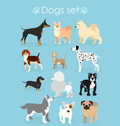 set funny purebred dogs vector image