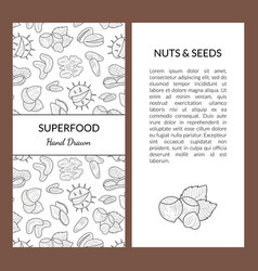 superfood card template with place for your text vector image