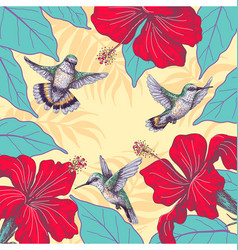 Tropical background with hibiscus and hummingbirds vector