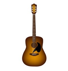 A Beautiful Acoustic Guitar on White Background vector image vector image