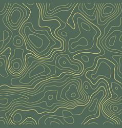 line topographic map contour elevation background vector image