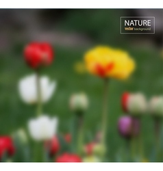 Floral blurred photo background vector image vector image