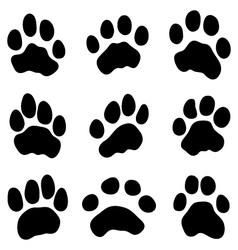 Tiger paw vector
