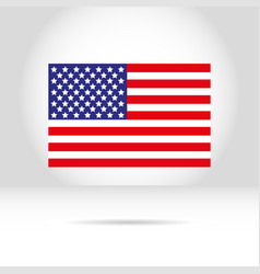american flag on a white gray background vector image