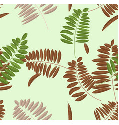 autumn acacia leaf seamless pattern soft pastel vector image