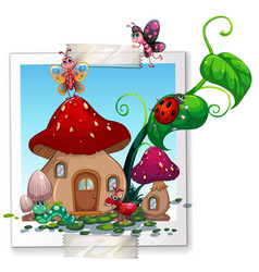 many insects at the mushroom house vector image