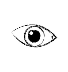 Sketch eye human optical look watch icon vector
