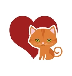 Cat feline curious small red heart vector