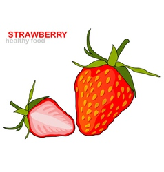 strawberry fruit vector image vector image