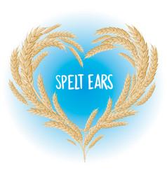 Spelt ears heart isolated vector
