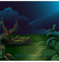 A beautiful landscape in a dark night vector image
