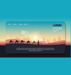 Caravan camels going through desert on sunset vector