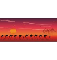 Caravan of camels vector