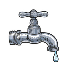dripping faucet sketch vector image