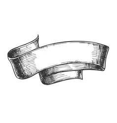 hand drawn classical advertising ribbon vector image