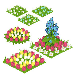 several unusually beautiful flower lawns vector image