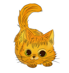 watercolor kitten vector image
