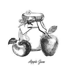 apple jamhand drawn ink sketch of vector image