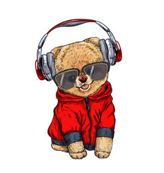 cute pomeranian toy dog dressed in red hoodie vector image