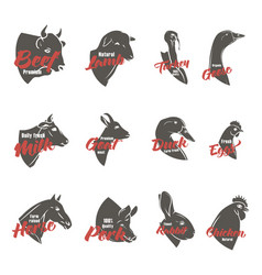 Farm animal heads icon set butchery logo and vector