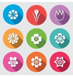 Flower icon set Camomile daisy tulip orchid vector image