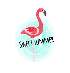 sweet summer pink flamingo bird poster design vector image
