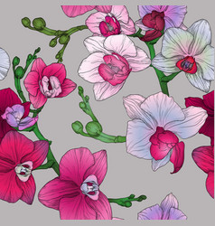 tropic floral seamless pattern with hand drawing vector image
