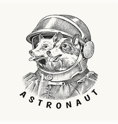 Two dogs husky astronauts in a spacesuit vector