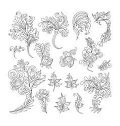 set of swirl vintage ornaments for design vector image