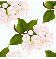 seamless texture apple blossom twig with leaves vector image vector image