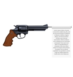 Big Revolver with empty flag vector image