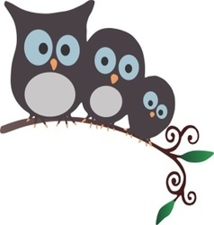 Three Owls on a branch vector image