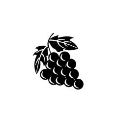 vine icon black design vector image