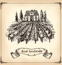 Vineyard Landscape - hand drawn vector