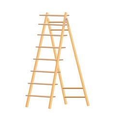 Wooden ladder household tool step ladder vector