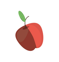 apple fruit fresh shadow vector image
