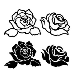 black rose silhouette isolated floral stencil vector image