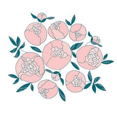 elegant light round peony flower bouquet vector image