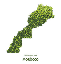 Green leaf map morocco a vector