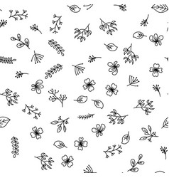 hand drawing flowers pattern on white background vector image