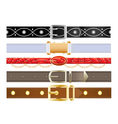 Leather belts with metal buckles vector
